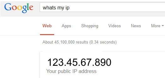 What's My IP Address?